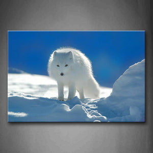 Arctic Fox Stand On Snowfield Wall Art Painting Pictures Print On Canvas Animal The Picture For Home Modern Decoration
