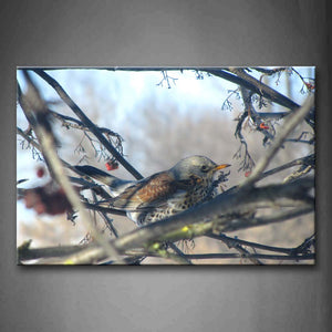 Bird With Edge Teeth Stand On Branch Wall Art Painting The Picture Print On Canvas Animal Pictures For Home Decor Decoration Gift