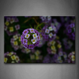 A Cluster Of Flowers With White And Purpel Color Wall Art Painting The Picture Print On Canvas Flower Pictures For Home Decor Decoration Gift