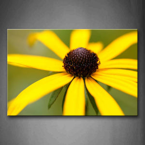 Yellow Peatals With Brown Anther Wall Art Painting Pictures Print On Canvas Flower The Picture For Home Modern Decoration