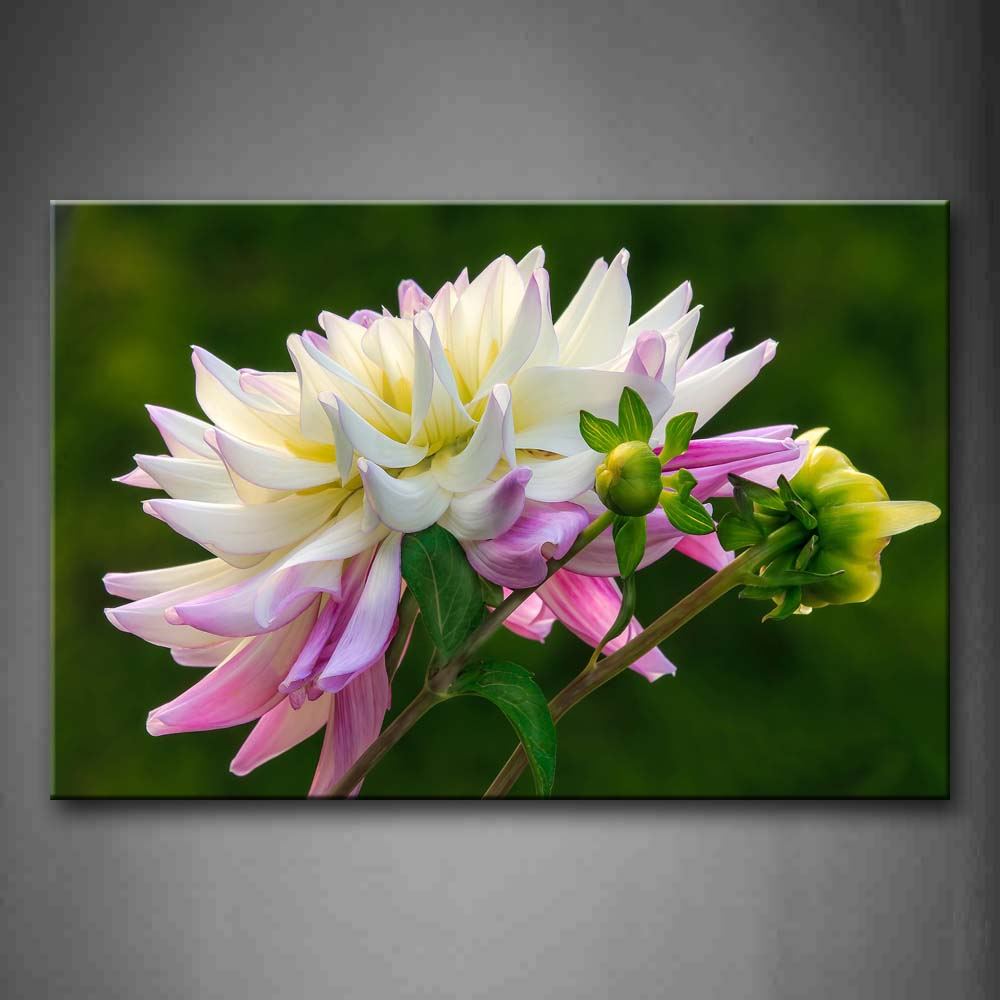 Big Flower With White And Pink Wall Art Painting The Picture Print On Canvas Flower Pictures For Home Decor Decoration Gift