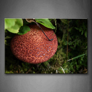 Big Mushroom In The Ground Wall Art Painting The Picture Print On Canvas Botanical Pictures For Home Decor Decoration Gift