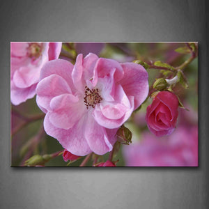 Beautiful Flowers In Bright Pink Wall Art Painting The Picture Print On Canvas Flower Pictures For Home Decor Decoration Gift