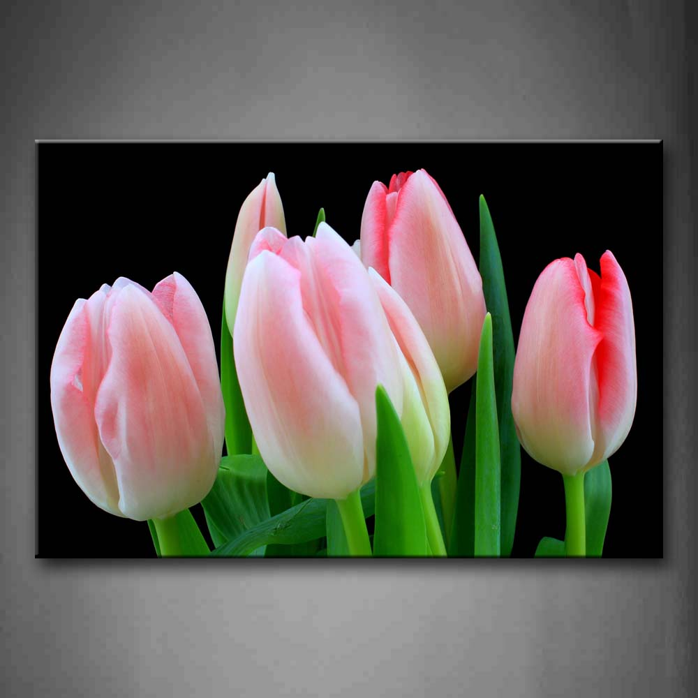 Beautiful Flowers In Pink And White With Fresh Leaves Wall Art Painting Pictures Print On Canvas Flower The Picture For Home Modern Decoration
