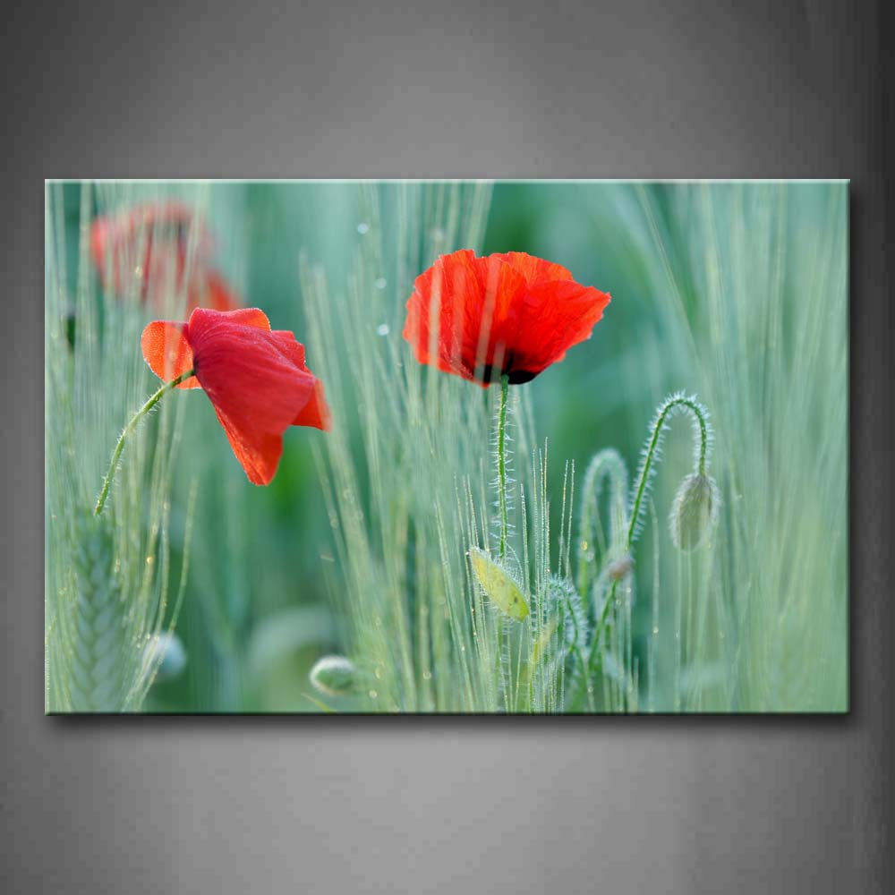 Beautiful Poppies In Bright Red With Leaves Wall Art Painting Pictures Print On Canvas Flower The Picture For Home Modern Decoration