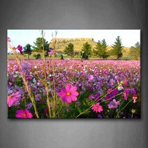 A Lot Of Flowers On Field Near Hill Wall Art Painting Pictures Print On Canvas Flower The Picture For Home Modern Decoration