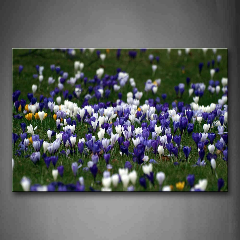 A Group Of White And Purple Flower On Grass Wall Art Painting The Picture Print On Canvas Flower Pictures For Home Decor Decoration Gift