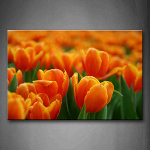 A Group Of Thick Orange Flower Wall Art Painting Pictures Print On Canvas Flower The Picture For Home Modern Decoration