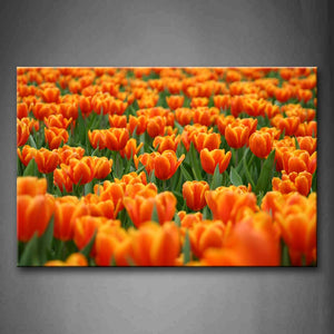 A Group Of Thick Orange Flower Beautiful Wall Art Painting The Picture Print On Canvas Flower Pictures For Home Decor Decoration Gift