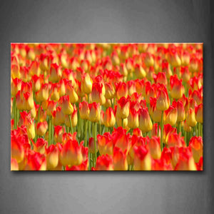 A Sheet Of Red Pulips Wall Art Painting The Picture Print On Canvas Flower Pictures For Home Decor Decoration Gift