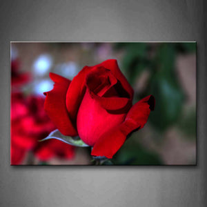 Beautiful Red Rose Wall Art Painting Pictures Print On Canvas Flower The Picture For Home Modern Decoration