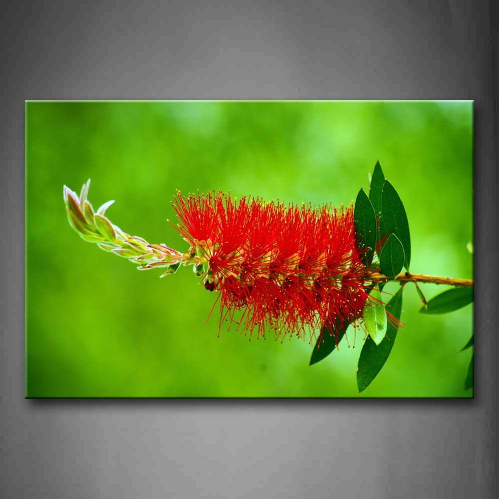 Beautiful Flower In Blossoming Wall Art Painting Pictures Print On Canvas Botanical The Picture For Home Modern Decoration