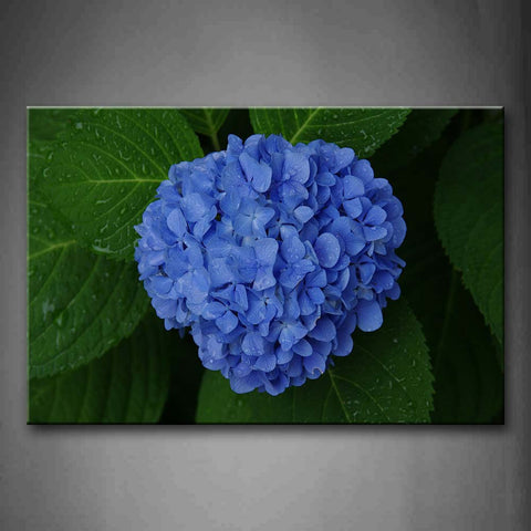 A Ball Of Blue Flowers Wall Art Painting The Picture Print On Canvas Flower Pictures For Home Decor Decoration Gift