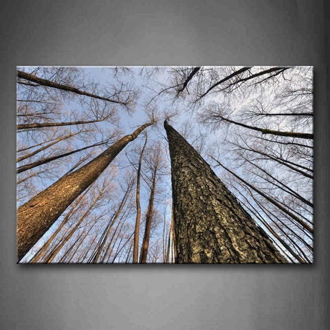Forest With Tall Tree Wall Art Painting The Picture Print On Canvas Botanical Pictures For Home Decor Decoration Gift