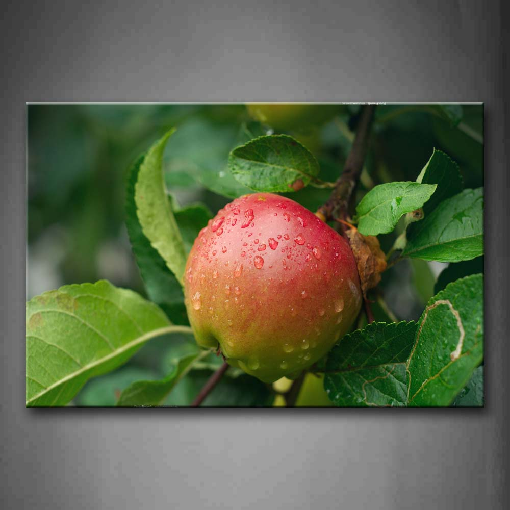 Apple With Water Drop And Green Leaf Wall Art Painting The Picture Print On Canvas Food Pictures For Home Decor Decoration Gift