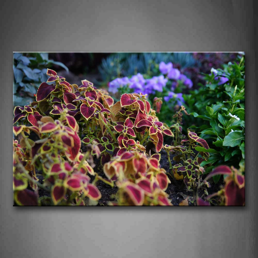 Beautiful Flowers In Red And Purple  Wall Art Painting Pictures Print On Canvas Art The Picture For Home Modern Decoration