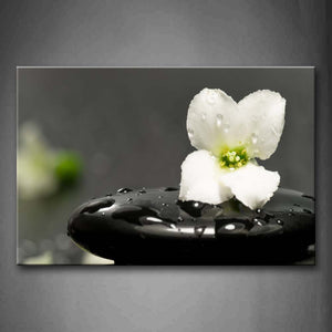 White Flower In Black Stone  Wall Art Painting The Picture Print On Canvas Religion Pictures For Home Decor Decoration Gift