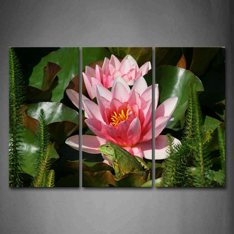 Green Frog Sit On Lotus Leaf And Near Lotus Wall Art Painting The Picture Print On Canvas Flower Pictures For Home Decor Decoration Gift