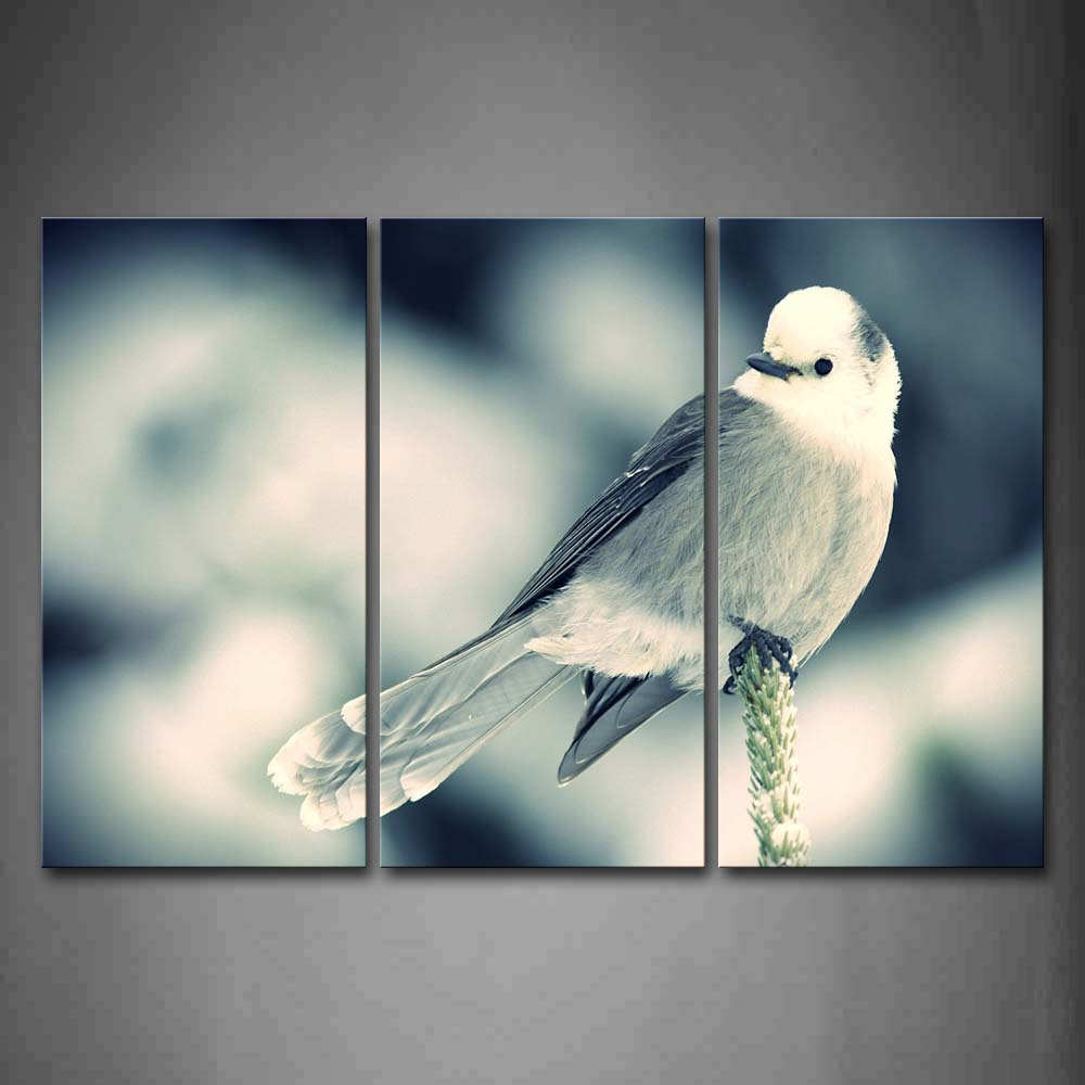Bird Stand On A Plant  Wall Art Painting The Picture Print On Canvas Animal Pictures For Home Decor Decoration Gift