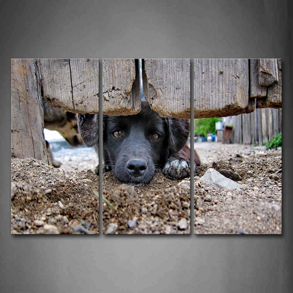 Black Dog Under Door Staring Wall Art Painting The Picture Print On Canvas Animal Pictures For Home Decor Decoration Gift