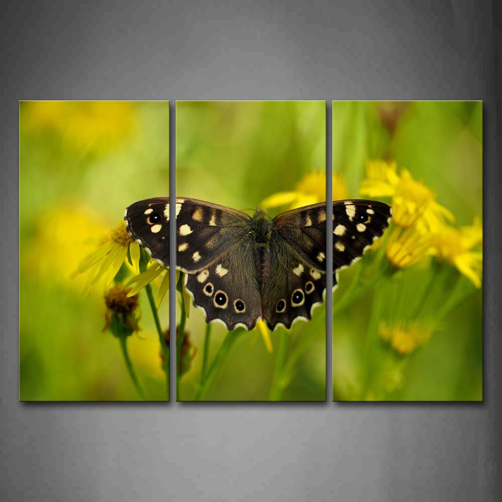 Black Butterfly With Spot In Yellow Flower Wall Art Painting Pictures Print On Canvas Animal The Picture For Home Modern Decoration