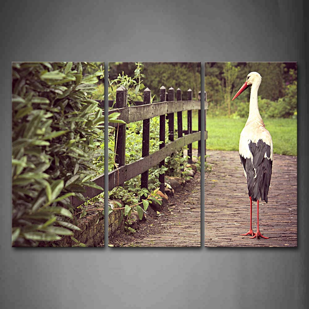 Bird Walk On Road Fence Lawn Tree Wall Art Painting Pictures Print On Canvas Animal The Picture For Home Modern Decoration