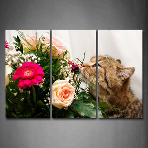 Black And Yellow Cat Smell A Bunch Of Colorful Flower Wall Art Painting Pictures Print On Canvas Animal The Picture For Home Modern Decoration