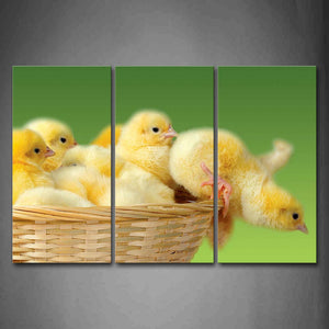 Bird Cubs In Basket  Wall Art Painting The Picture Print On Canvas Animal Pictures For Home Decor Decoration Gift