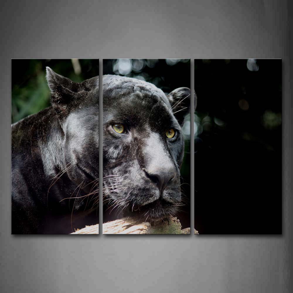 Black Panther Head Wood Portrait Wall Art Painting The Picture Print On Canvas Animal Pictures For Home Decor Decoration Gift