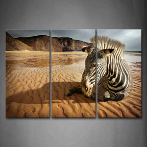 Zebra Sit On Beach Sand Mountain Wall Art Painting Pictures Print On Canvas Animal The Picture For Home Modern Decoration