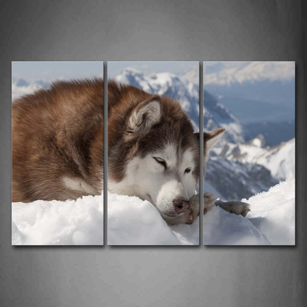 Alaskan Malamute Lie On Snowfield Wall Art Painting Pictures Print On Canvas Animal The Picture For Home Modern Decoration