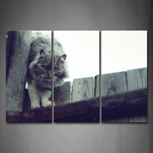 Black And White Gray Cat Climb On Wood Door Wall Art Painting Pictures Print On Canvas Animal The Picture For Home Modern Decoration