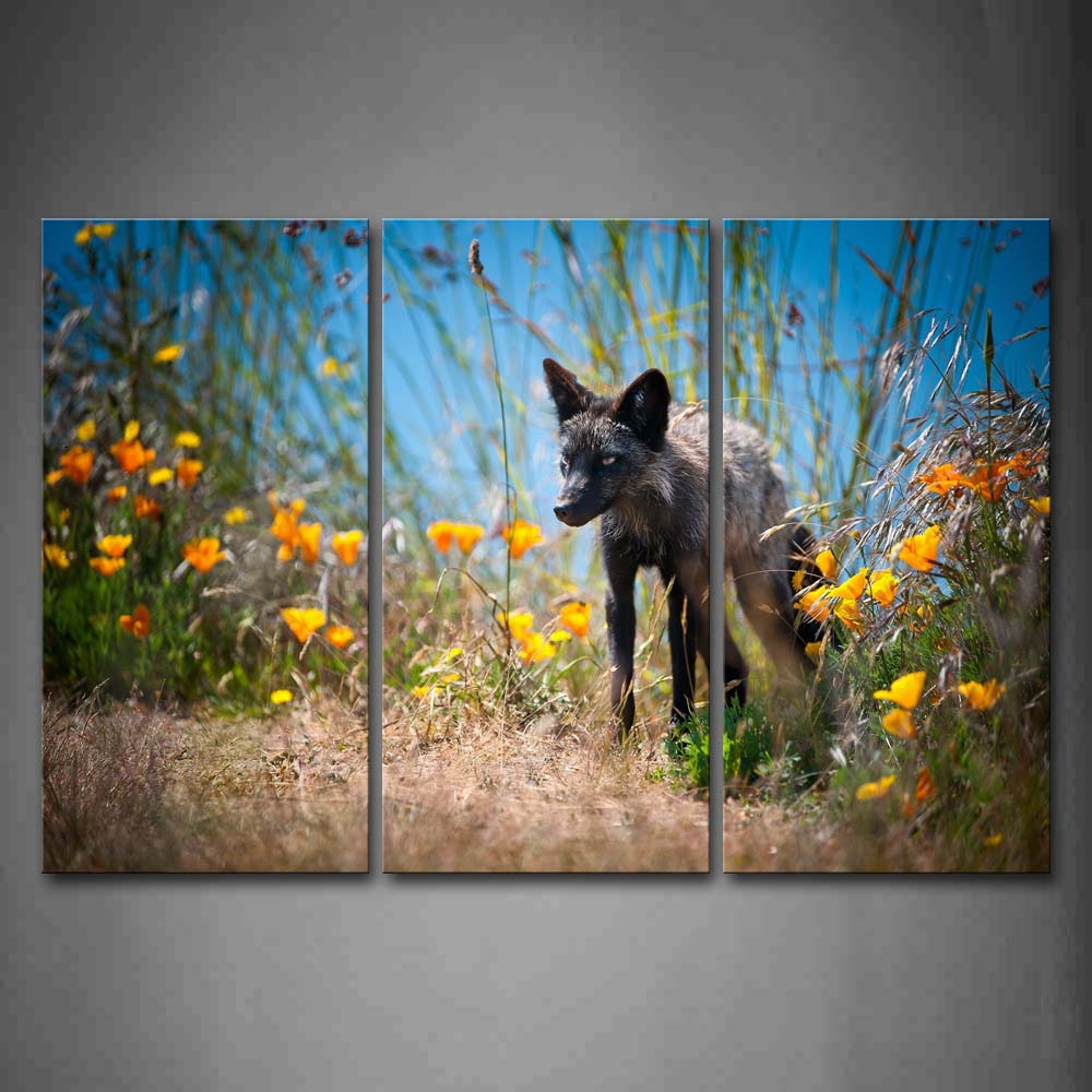 Black Fox Stand Near Flowers And Grass Wall Art Painting The Picture Print On Canvas Animal Pictures For Home Decor Decoration Gift