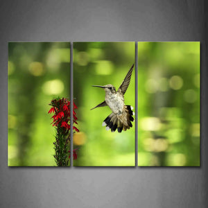 Bird Fly Near Red Flowers Wall Art Painting Pictures Print On Canvas Animal The Picture For Home Modern Decoration