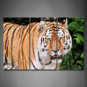 Big Tiger Stand Near Trees  Wall Art Painting The Picture Print On Canvas Animal Pictures For Home Decor Decoration Gift
