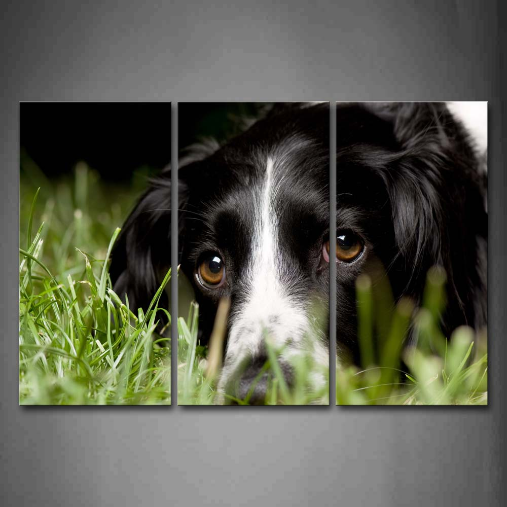 Black Dog Lie On Lawn  Wall Art Painting The Picture Print On Canvas Animal Pictures For Home Decor Decoration Gift