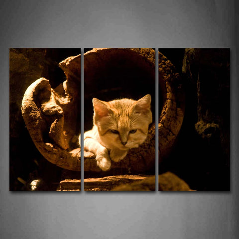 Sand Cat Stay In Wood  Wall Art Painting The Picture Print On Canvas Animal Pictures For Home Decor Decoration Gift