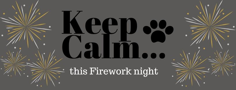 Top Tips to Keep Your Dog Calm This Firework Night!