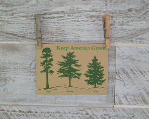 Keep America Green, Red White Blue, Pine Trees, Blank Card, Recycled Paper, Compostable Plastic, Environmentally Friendly, Nature Love