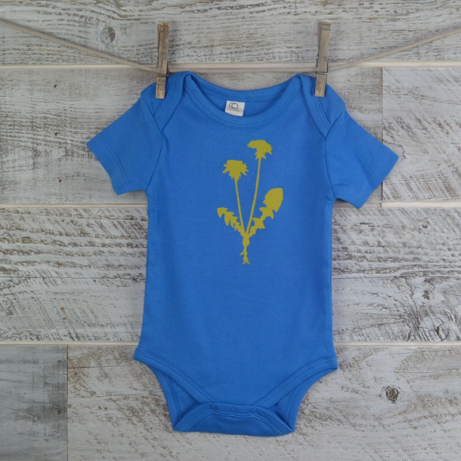 b972a22aa2fa Organic Cotton Onesie Short Sleeve Blue - Dandelion Flower - Think ...