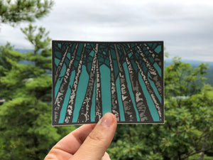 Birch Trees Sticker