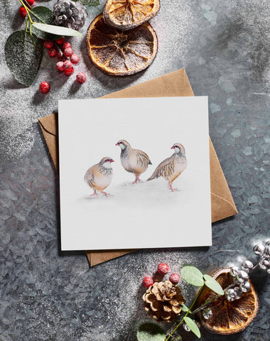 Lottie Murphy 3 Partridges Christmas Card