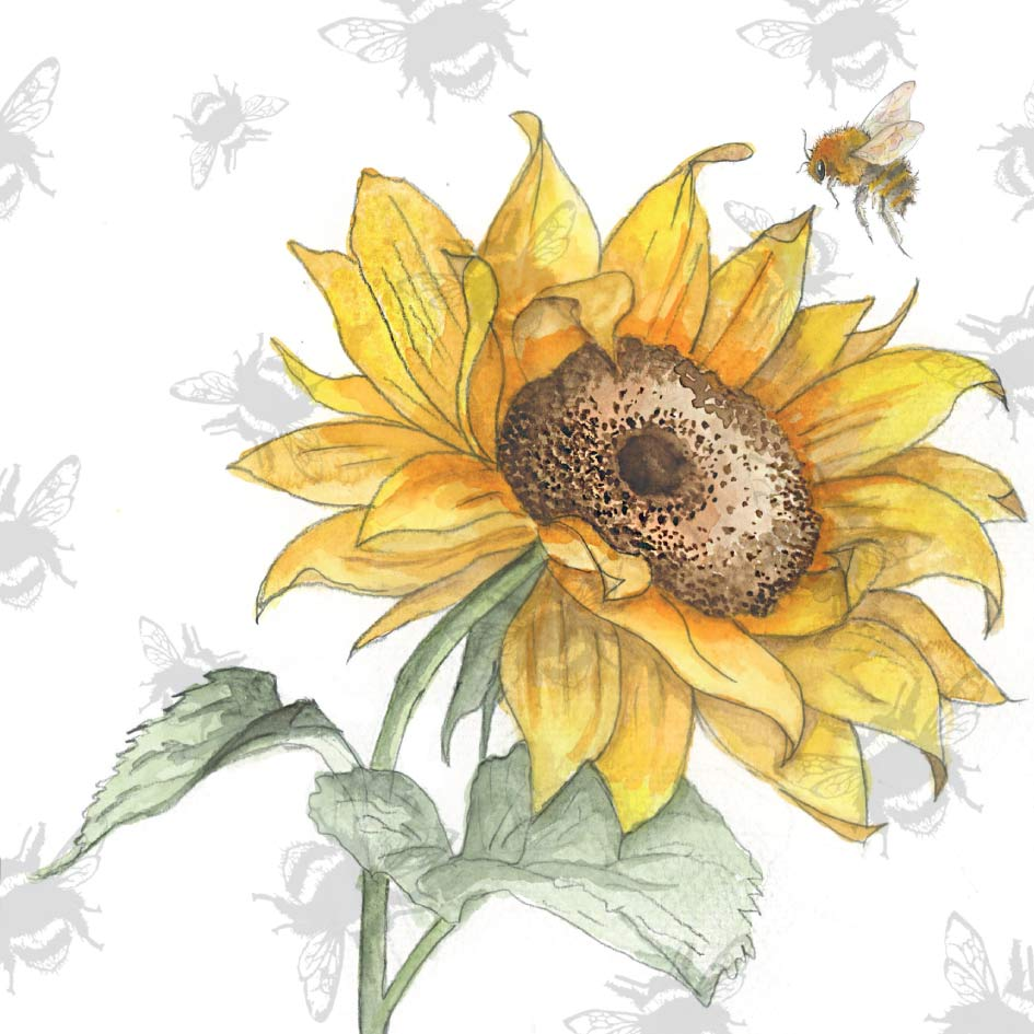 Pear Tree Heybridge - Sarah Broddy - Bee-tancial- Sunflower
