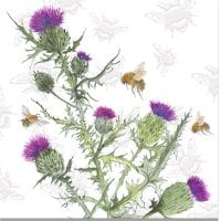 Sarah Broddy - Bee-tanical - Thistle