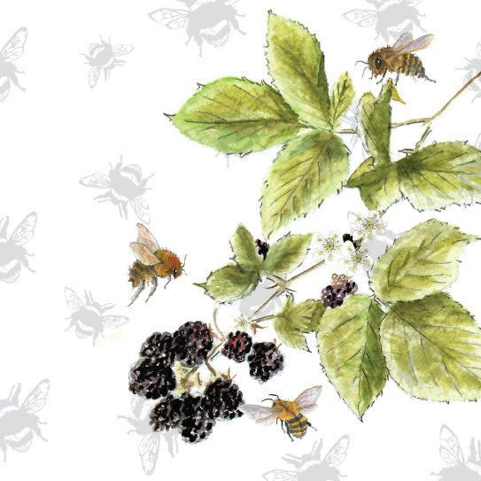 Pear Tree Heybridge - Sarah Broddy - Bee-tancial Blackberries