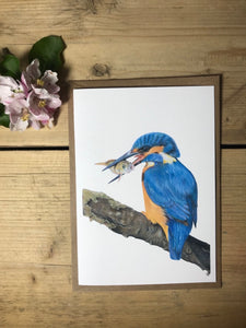 Charlotte Patten - A6 Kingfisher