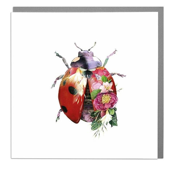 Lola Designs Ltd Greetings Card - A Wildlife Botanical Lady Bird Greeting Card