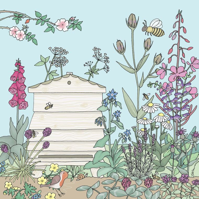 Robin and Honey Bees Greetings Card - Emma Lawrence