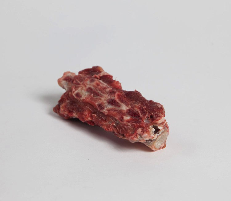 Raw Meaty Lamb Bone (small vertebrae)