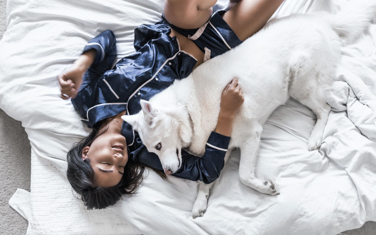 Girl with dark hair wearing a satin dark blue sleeping set laying on white sheets and holding her husky dog